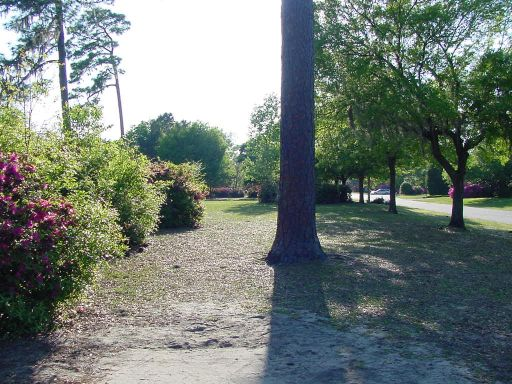 Fairway view of Hole #16 (#7) at Park Circle Disc Golf Course.