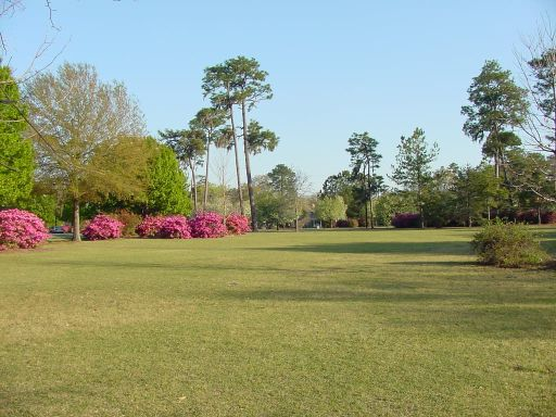 Fairway view of Hole #1 (#10) at Park Circle Disc Golf Course.