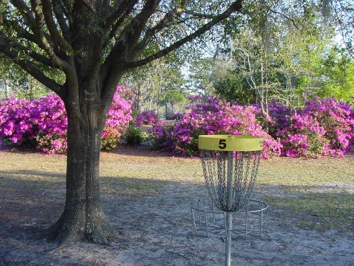Basket view of Hole #5 (#14) at Park Circle Disc Golf Course.